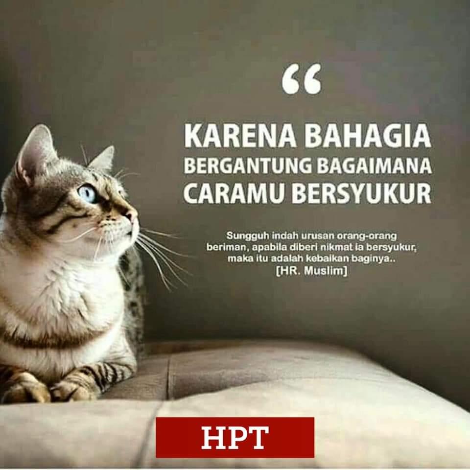 hpttourtravel.com-bahagia-syukur