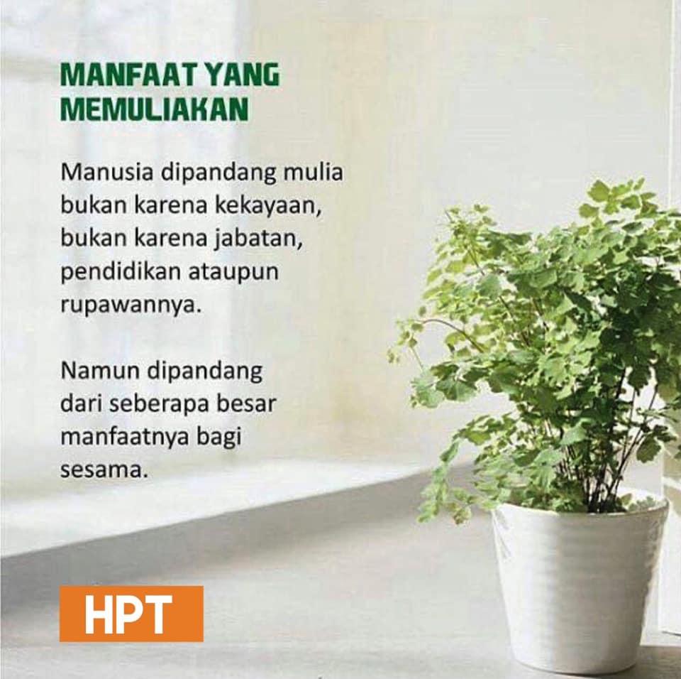 hpttourtravel.com-kemuliaan