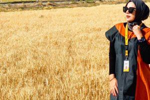 hpttourtravel-ladang-gandum-002